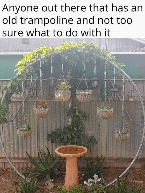 Eco-Friendly Tips (20 pics)