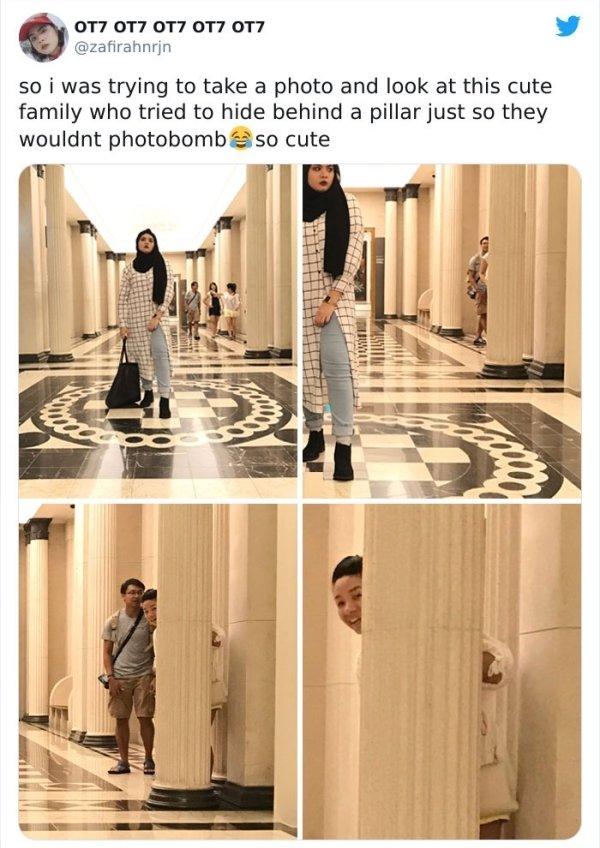 Professional Photobombing (25 pics)