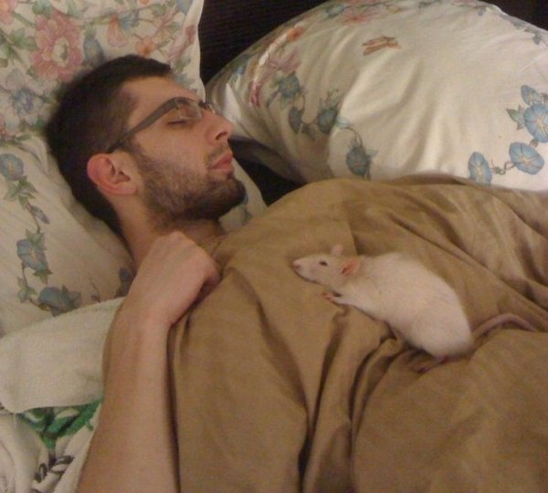 Friendship Between People And Animals (18 pics)