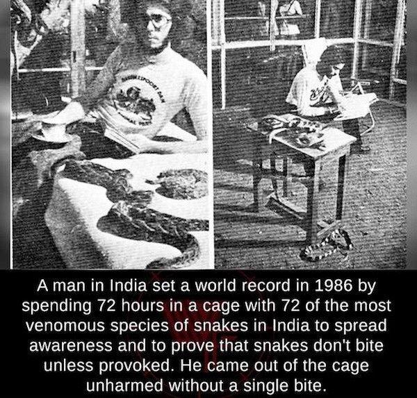 It's Interesting (25 pics)