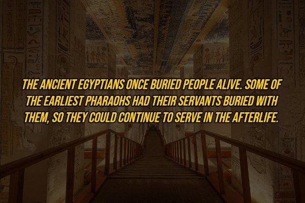 Egypt Facts (18 pics)