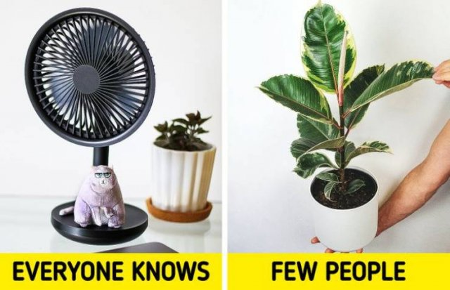 Lifehacks To Protect You From The Heat (13 pics)