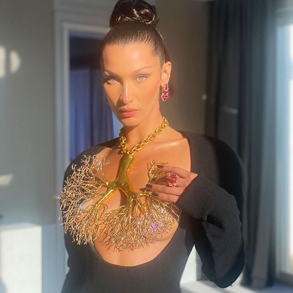 Science Claims That Bella Hadid Is The Most Beautiful Woman (12 pics)