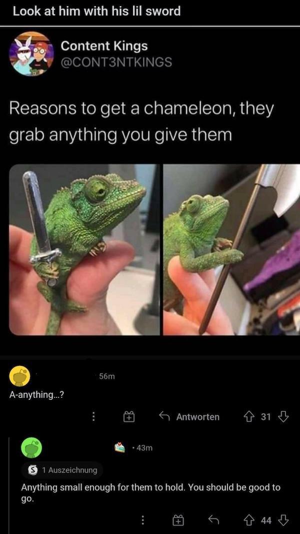 Sarcastic Comments (15 pics)