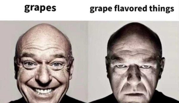 Food Memes (30 pics)