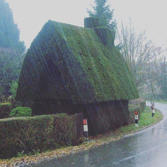 Weird Gardens (30 pics)