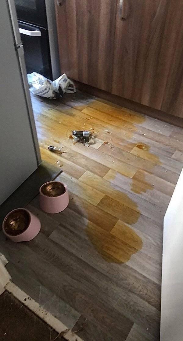 Bad Days Happen (46 pics)