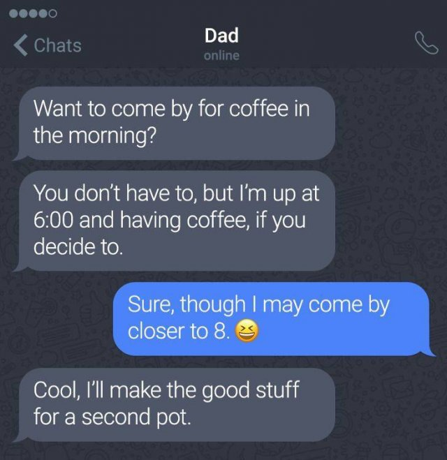 Dads Will Be Dads (17 pics)
