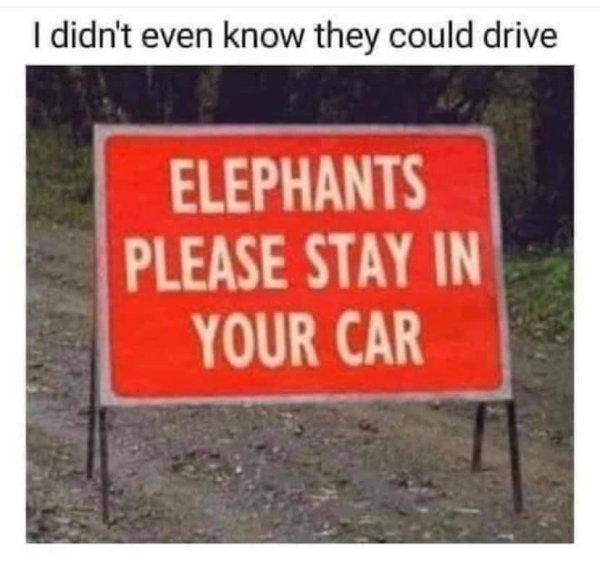 Random Funny Memes (40 pics)