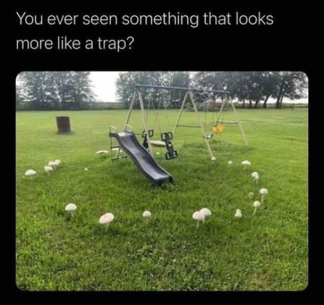 Creepy Things (50 pics)