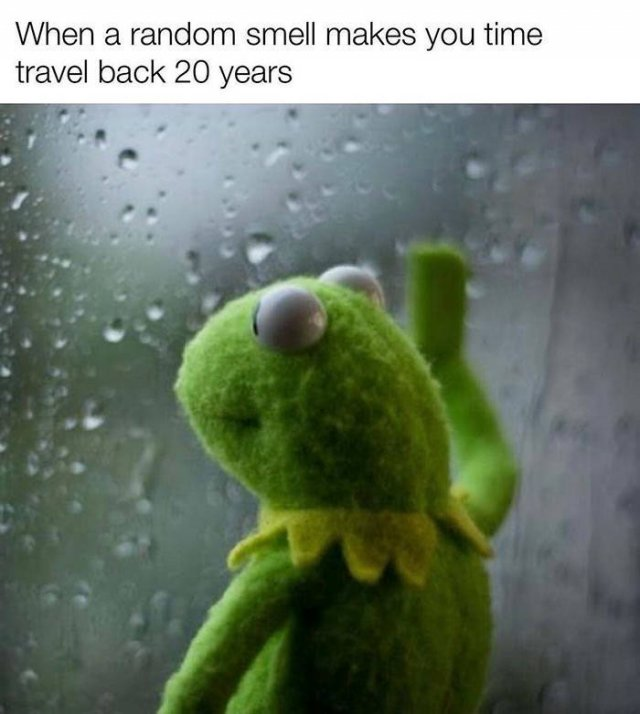 So True (42 pics)