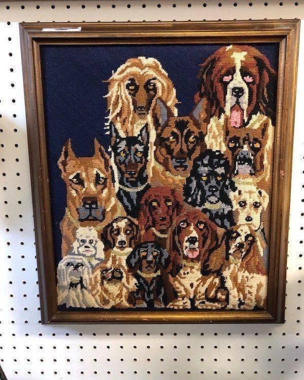 Weird Thrift Shop Finds (24 pics)