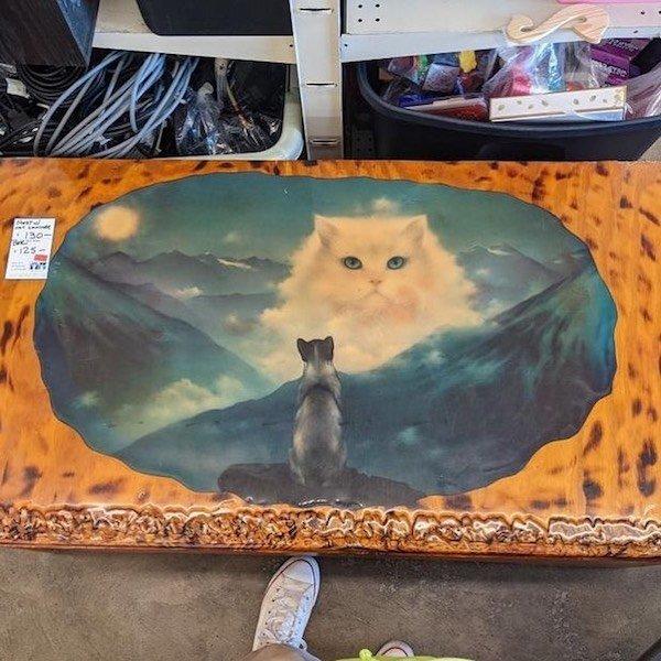 Weird Thrift Shop Finds (31 pics)