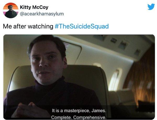 The Suicide Squad Memes (28 pics)