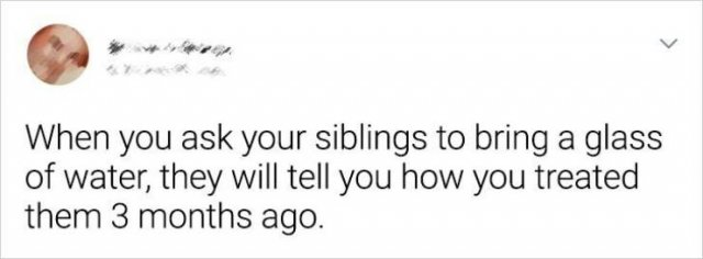 Living With Siblings (20 pics)