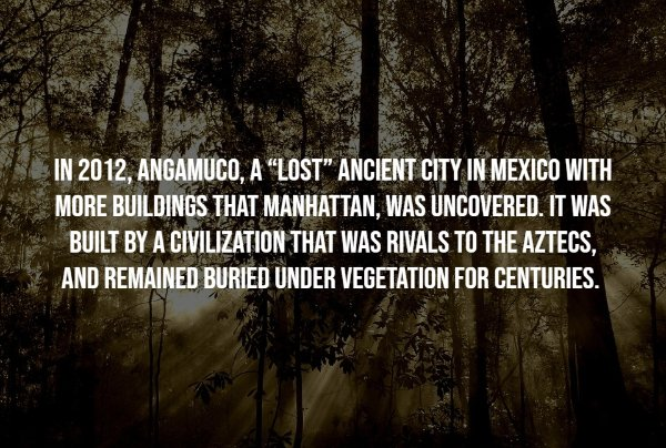 Intriguing Facts (17 pics)
