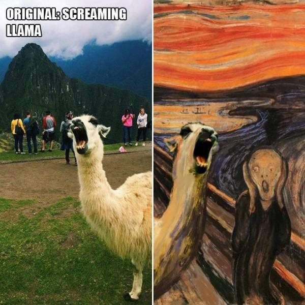 Hilarious Photoshop (19 pics)