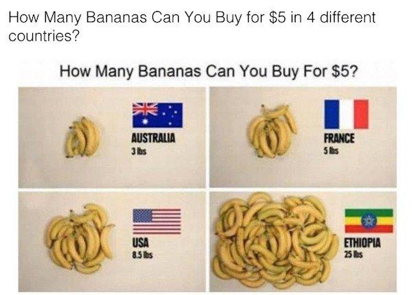 Food Charts (27 pics)