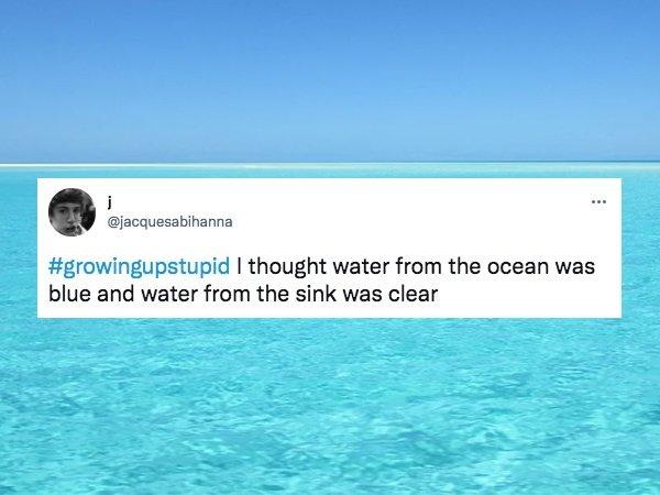 Growing Up Dumb Tweets (28 pics)