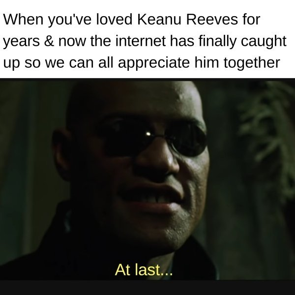 Keanu Reeves Memes And Pictures (57 pics)