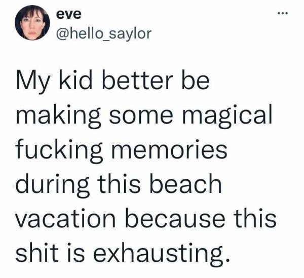 Vacation Tweets (25 pics)