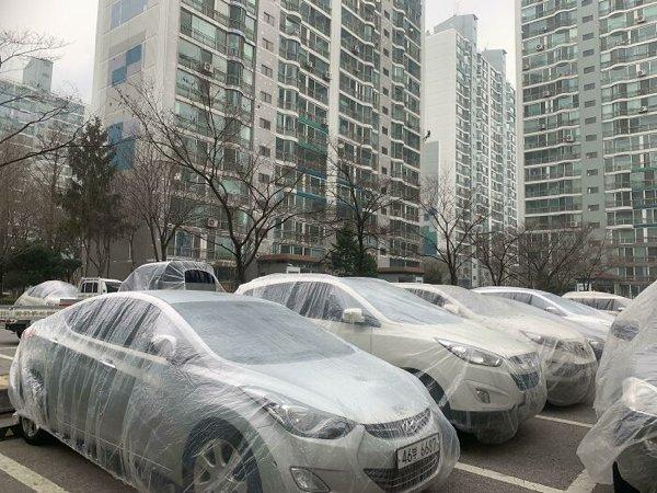 Life In South Korea (20 pics)