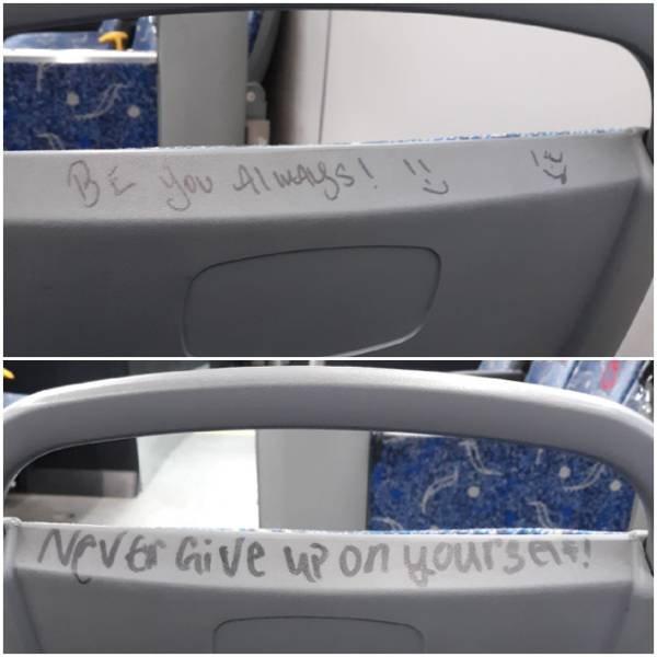 Mild Vandalism (34 pics)
