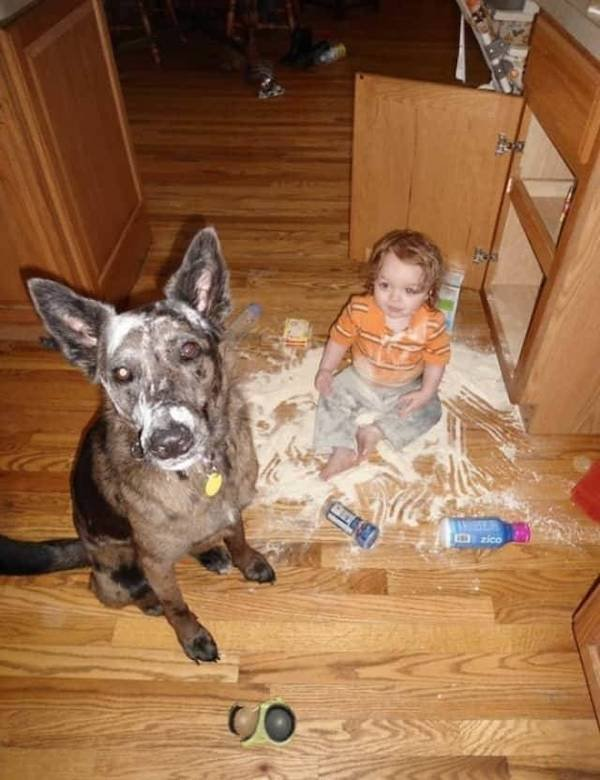 Living With Kids (36 pics)