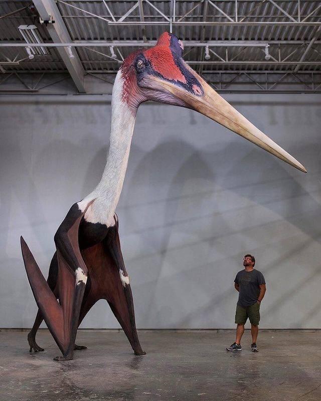 Giant Things (14 pics)