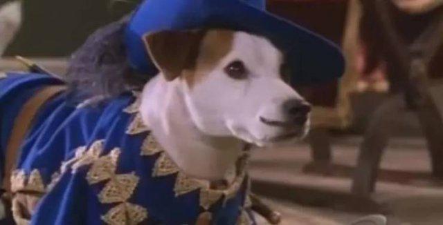 90's TV Show Facts (19 pics)