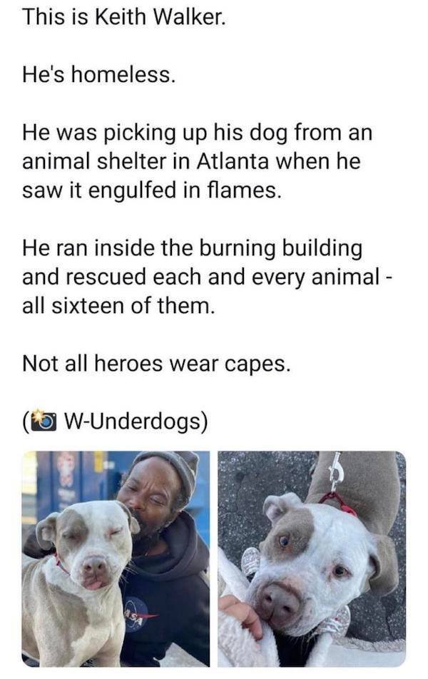 Wholesome Stories (40 pics)