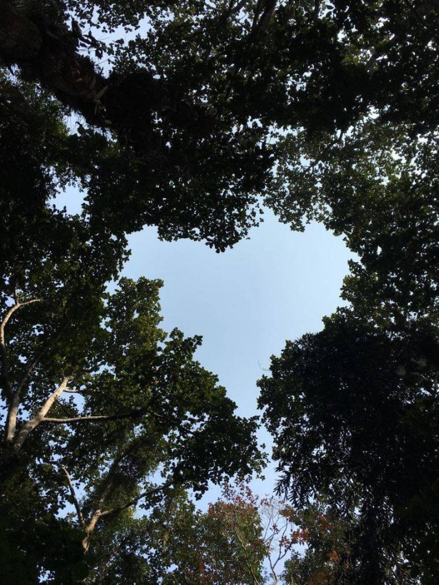 Beautiful Nature (37 pics)