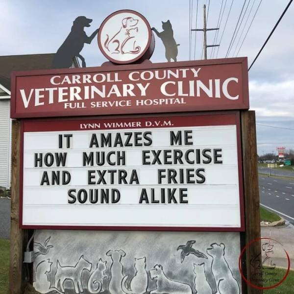 The Carroll County Veterinary Clinic Signs (30 pics)