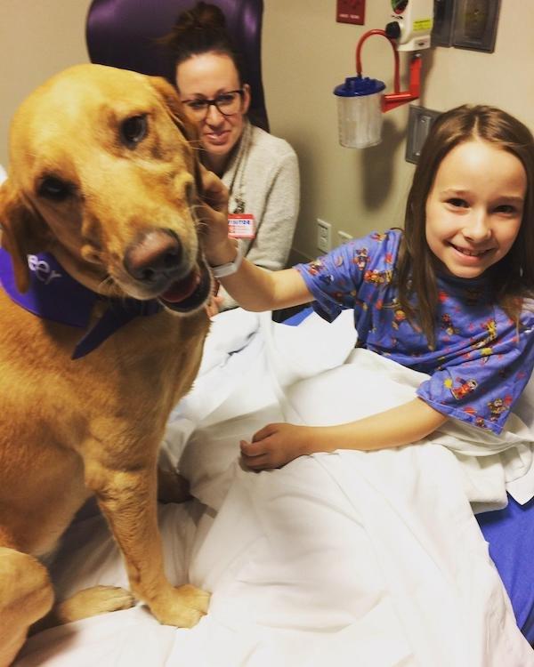 When Pets Save Human (17 pics)