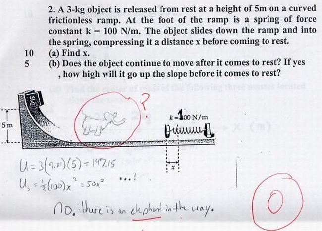 Funny Exam Answers (38 pics)