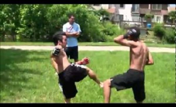 This Backyard Fight Is Not That Bad