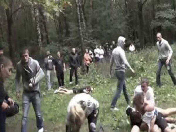 Just Savage. 4 Wild Fight Videos