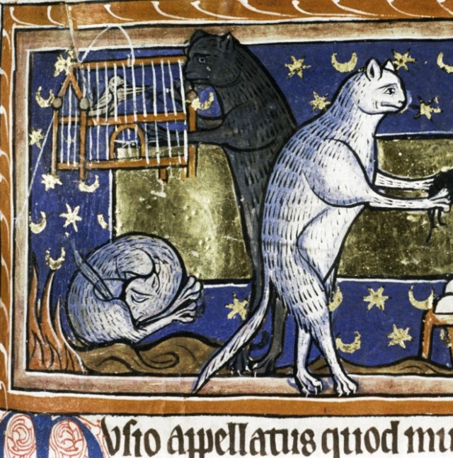 Medieval Paintings of Cats Licking Their Butts (15 pics)