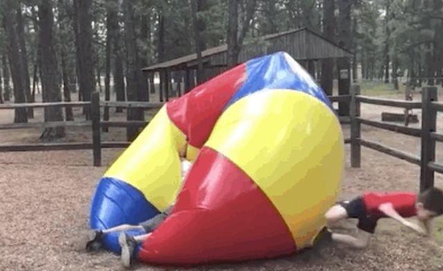 Kids Fails (21 gifs)