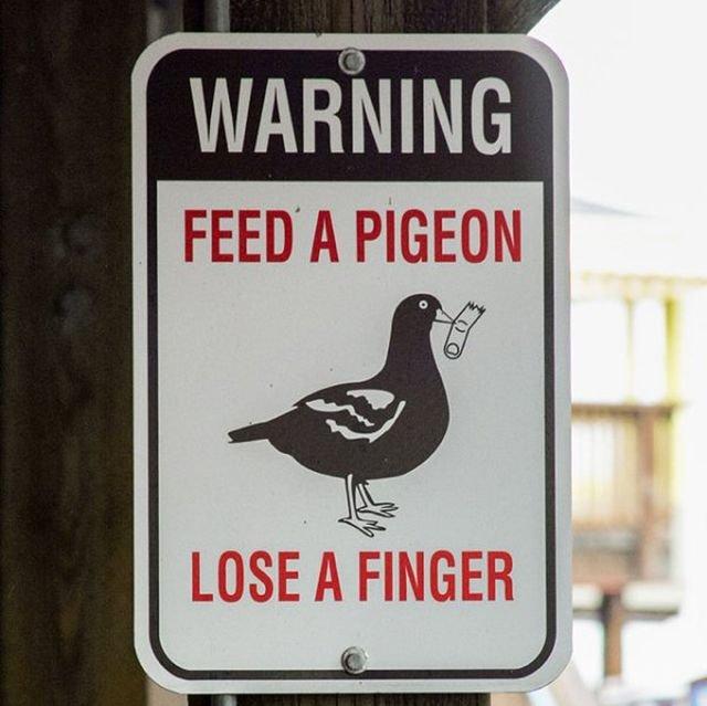 Smart Signs (35 pics)