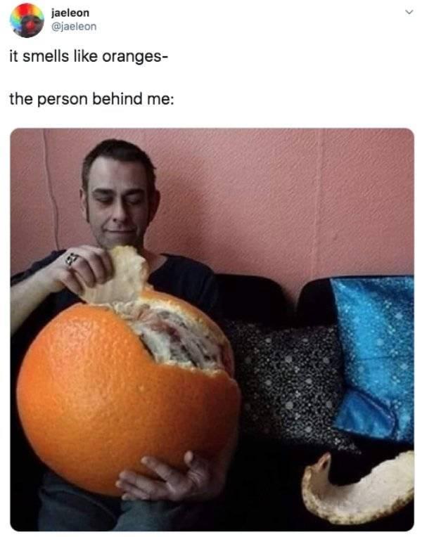Random Funny Tweets (50 pics)