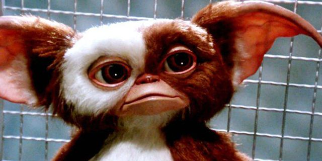 5 Crazy Facts About The 'Gremlins' Movie